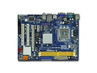 MB  Socket 775 ASROCK iG31 Express _prociCeleroniPentium DiCore2 Duo ProcessoriCore2 Extreme