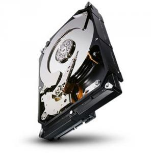 Seagate Constellation CS 1TB