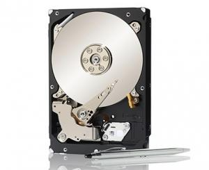 Seagate Constellation 2TB
